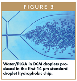 Water/PLGA in DCM droplets produced in the first 14 μm standard droplet hydrophobic chip.