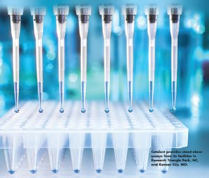 Catalent provides stand-alone assays from its facilities in Research Triangle Park, NC, and Kansas City, MO.