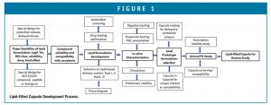 Lipid-Filled Capsule Development Process