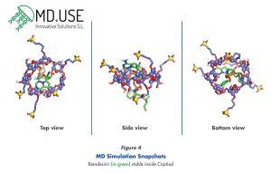 MD Simulation Snapshots Remdesivir (in green) stable inside Captisol