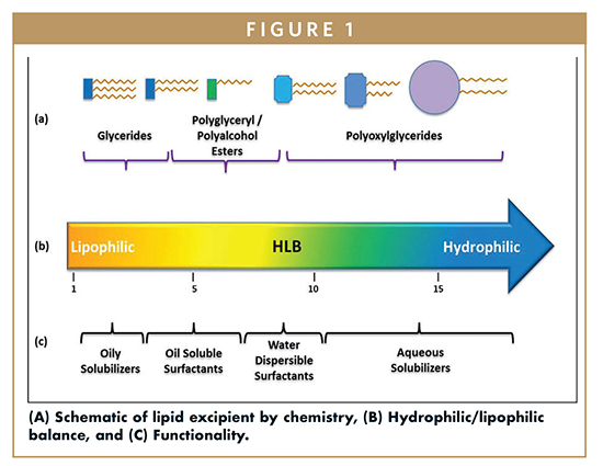 LIPID-BASED DELIVERY - Are Lipid-Based Drug Delivery Systems in Your